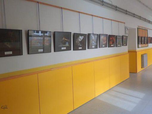 La sección de Espeleología del CAS en el Instituto de Aínsa. Sobrarbe Subterráneo.
