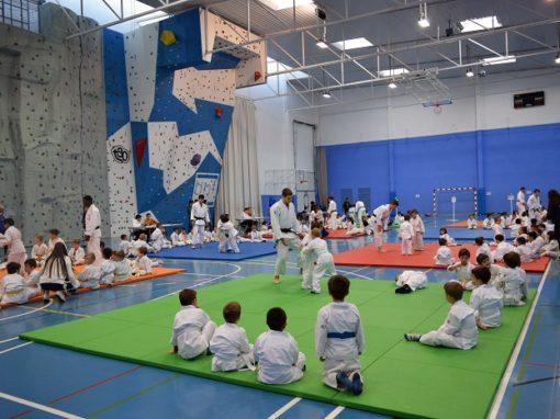 La Escuela de Judo del CAS organizó en Sobrarbe el pasado fín de semana el pre-campeonato de España. 13 y 14 de Abril