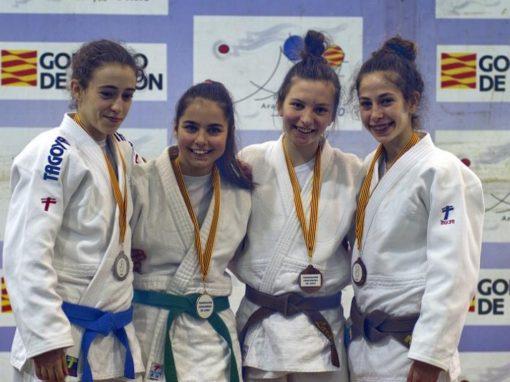 Judo: Campeonato escolar en categoría cadete